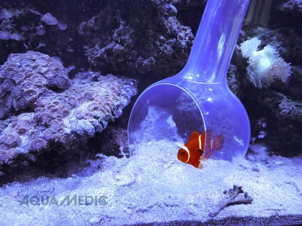 Aqua Medic Fangkelle catch bowl
